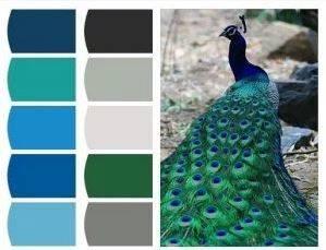 diseño web en valencia - colores